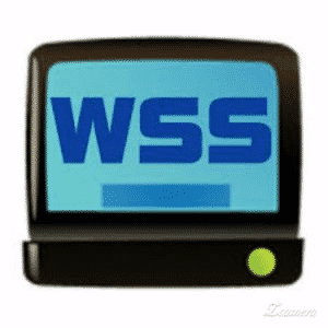 wss 2.1